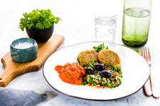 protein falafel hr 7 225